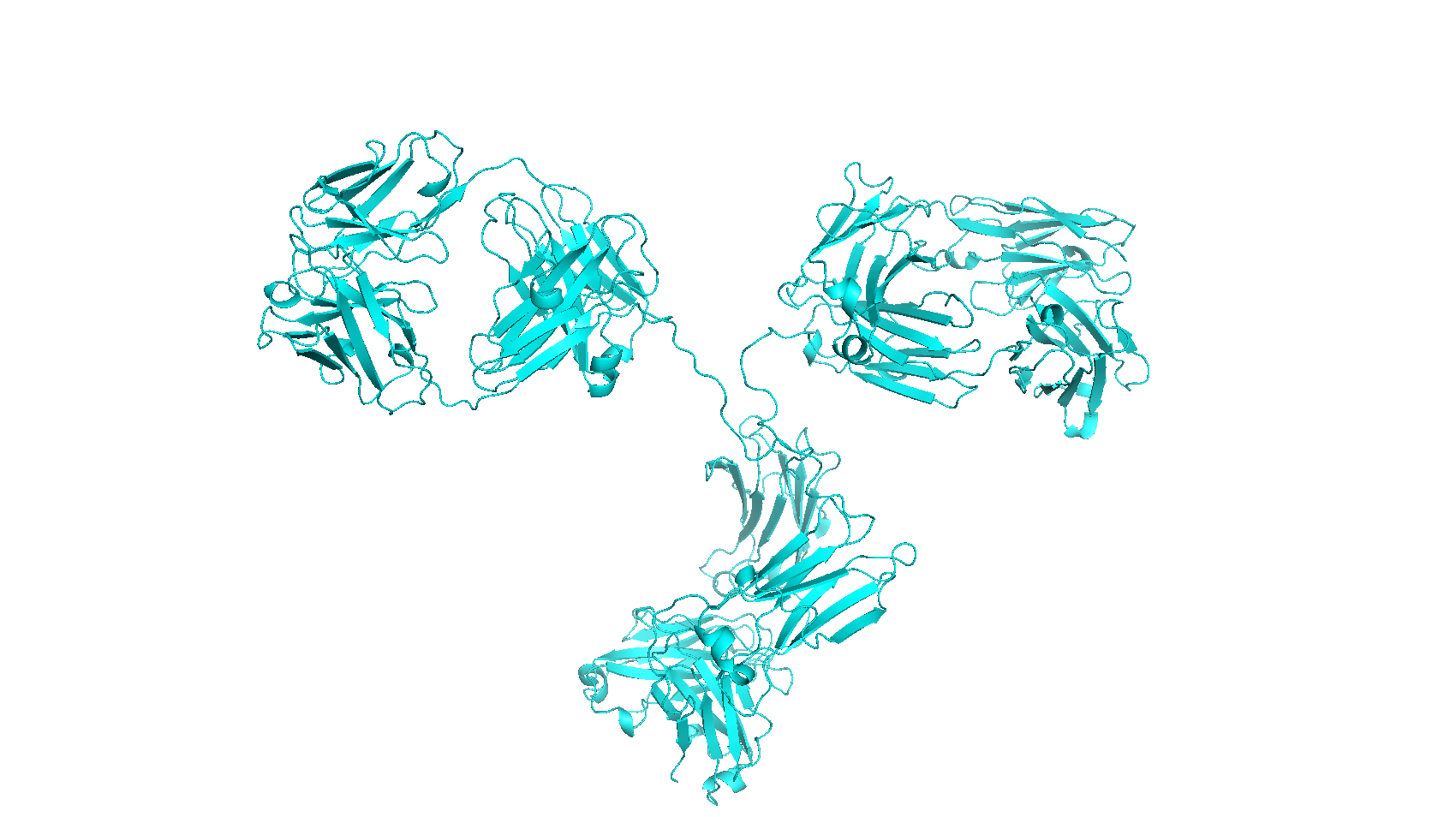 List of protein hydrodynamic diameters | Dynamic Biosensors