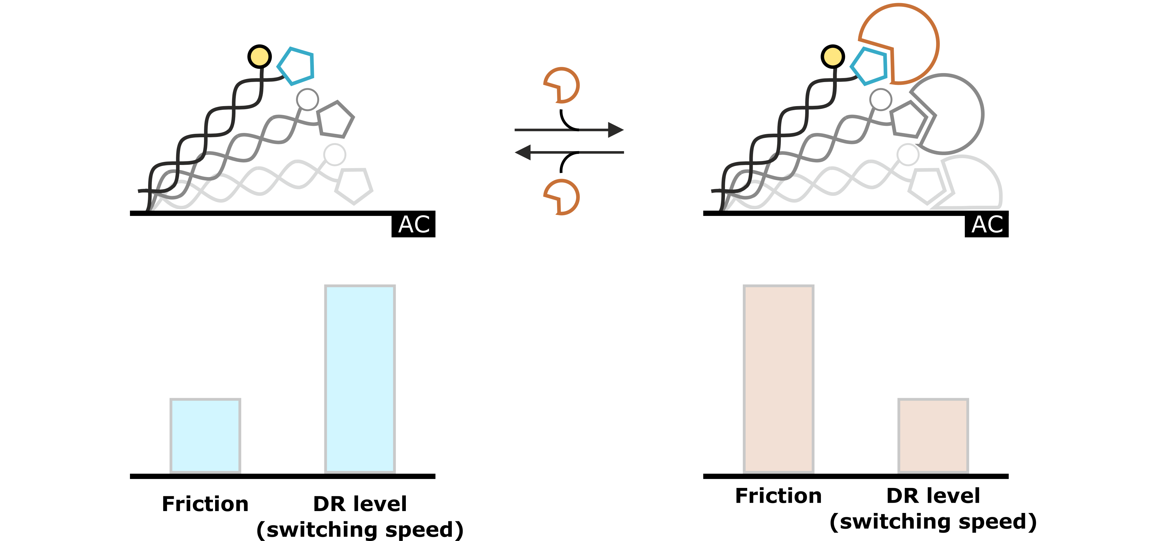 FAQs | Dynamic Biosensors