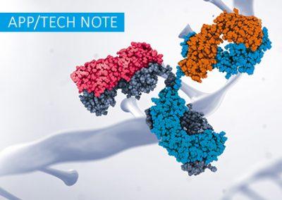 A straightforward method to conjugate antibodies to oligonucleotides – preparation, purification and their applications