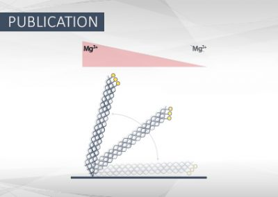 Magnesium-Dependent Electrical Actuation and Stability of DNA Origami Rods