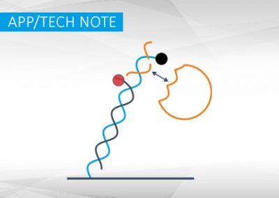 Measuring ligation activity of T4 DNA ligase on nicked DNA with switchSENSE®
