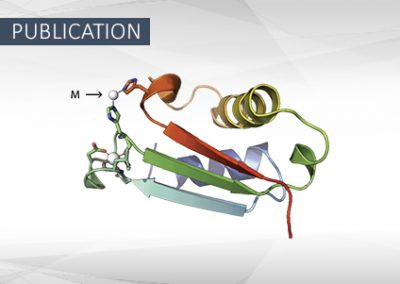 Sinorhizobium meliloti YrbA binds divalent metal cations using two conserved histidines