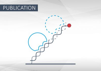 switchSENSE technology for analysis of DNA polymerase kinetics